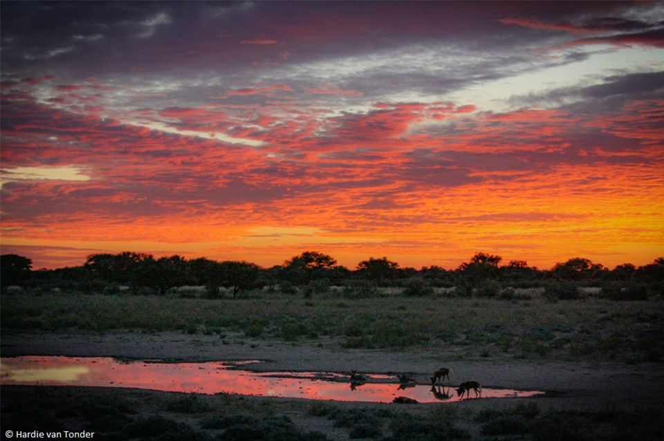 Sunset - Krugerparksafariscout.com